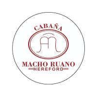 Macho Ruano